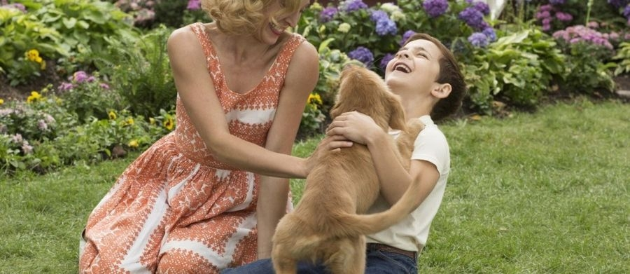 Итан играет с Бэйли в детстве